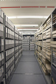 Records storage at the Smithsonian Archives. Could one of these boxes hold a 100-year-old fetal skeleton?